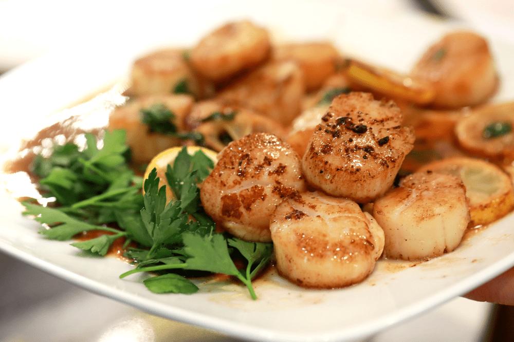 sea scallops, seared scallops, tasty, seafood, lemon and parsley scallops, fresh seafood,