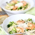 Pasta in creamy sauce with shrimp and broccoli